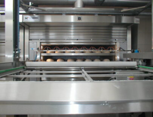 Thermal Oil Oven
